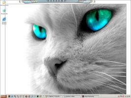 blue_green eyed kitty by emblazedgreen