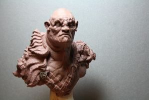 Giant bust 14 cm tall by giolord11