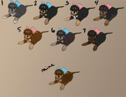 Puppies! CLOSED-All Taken! by Xunau66