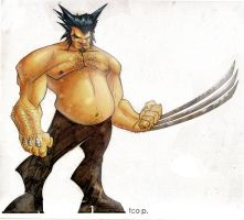 wolverine colors by fco