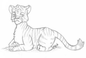 Tiger Sketch by OEmilyThePenguinO