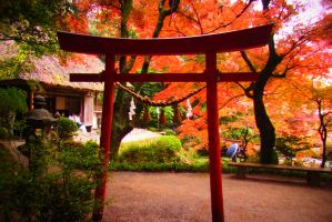 from small torii of small garden by worldhearts