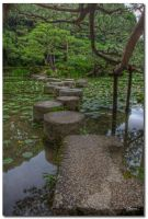 Stepping stones by dragonslayero