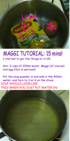MAGGI Tutorial: 15 Minutes by WongZixin