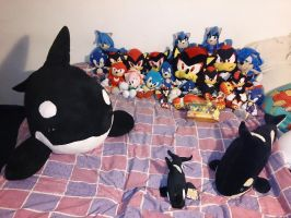 My Sonic Collection Plus Orcas by X-SoniaTyler-X