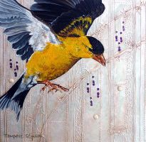 American Goldfinch Impromptu by TempestErika