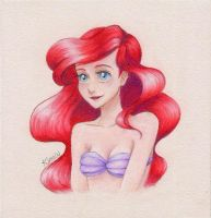 Ariel by PrincessLaguia