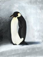 The dramatic Penguin by Dascia