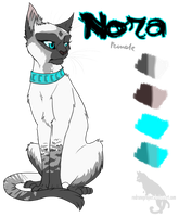 Nora Character Sheet by Kocurzyca