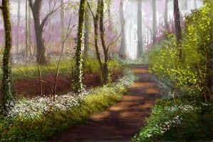 The path through the trees by turkill