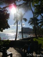 Ending Thoughts on Waikiki by AllAboutDianne
