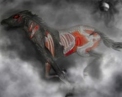 Zombie horse by ApocalypticMongoloid