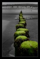 A thin green line by Jaydehawk