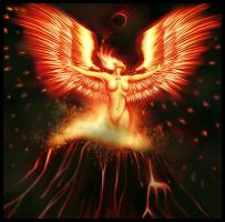 The Birth of Phoenix by rofs
