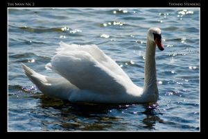 The Swan Nr. 2 by tomba76
