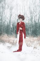 Frost by Lisa-MariePhotog