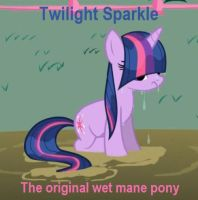 Twilight Sparkle was First Hipster by Crackerjack-Pony