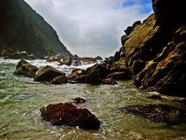 The Shore at Big Sur by yalanrei