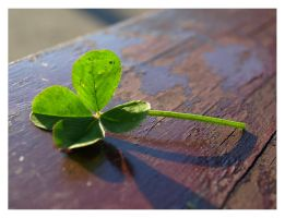 My Lucky Day by Amelie1994