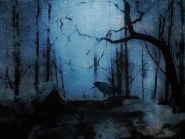 the night of a crow by Amalus