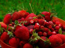 strawberry swing by J-and-R