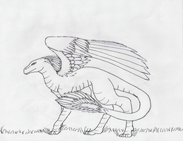 Dragon with feathers by Haggis53