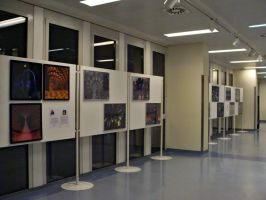 Fractal Exhibition by allthenightlong