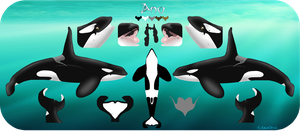 Ano Reference Sheet by AnoOrca