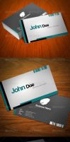 Elegant Business Card by UnicoDesign