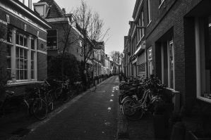 Out and about in Haarlem by mannynyf