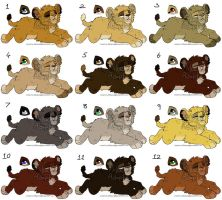 Bundle of Cubbies Adopts OPEN (1left) by MikacesAdopts