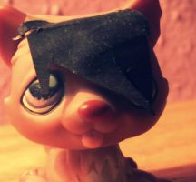 Littlest Pet Shop Custom by BlackKittyShelby
