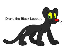 Drake the Black Leopard by AhO4464
