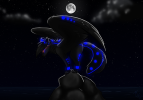 :Prize: Midnight Perch by BeautySnake