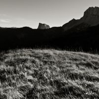 Herbes by rdalpes