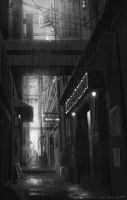 The Street and the rain by NOOSBORN