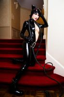 Catwoman - DC Comics by Mostflogged