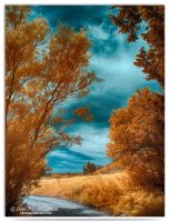 Autumn - infrared by LightSculpting