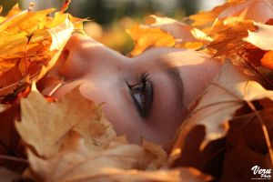 Queen of autumn by VeruPhotos