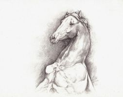 horse in pencils by howlinghorse