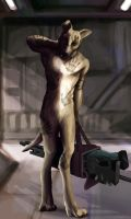 Krieger for Coyote by themyshkin