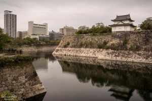 Osaka Castle by LunaFeles