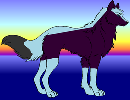 nazo my adopted wolf by wolfofdeth