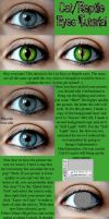 Cat Eye and Reptile Eye Tutorial by JoeleneyBeaney