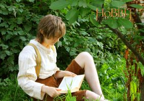 Quietly in the Shire by Nippip