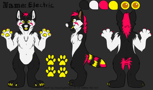 Electric ref by Chargay