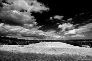 BW Fields by MCG0603