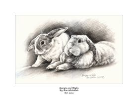 My Bunnies - Georgie  and Digby by Kat-Nicholson