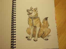 Tacoro in a book! by Sally-Ce