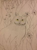 Cat Drawing- In Progress by SleepyIguana